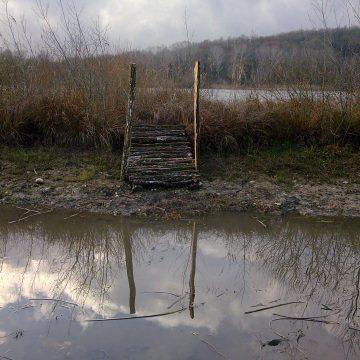 Solarium pour les tortues de l'étang de Lemps – Optevoz