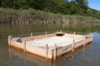 Radeau flottant – Moras