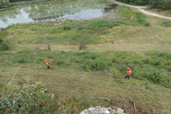 Entretien Espace Naturel Sensible de l'étang de Bas – Siccieu